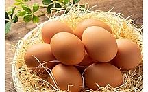 卵の食べすぎは良くない?卵とコレステロールの心血管へのリスク