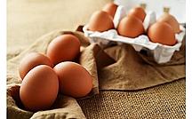 卵は体に良いのか悪いのか 最新の研究が示した結果は